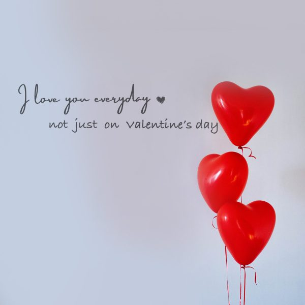 Decorative lettering wall sticker by CaptainText: I love you everyday