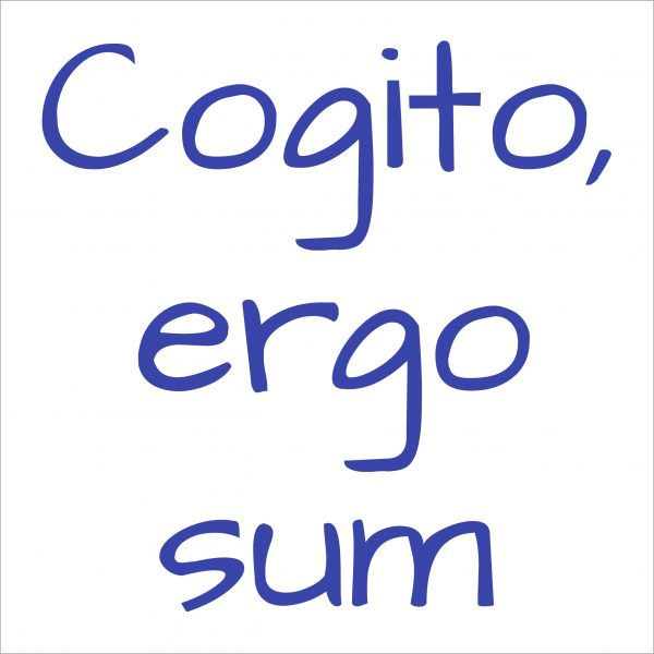 Decorative lettering wall sticker by CaptainText: Cogito ergo sum