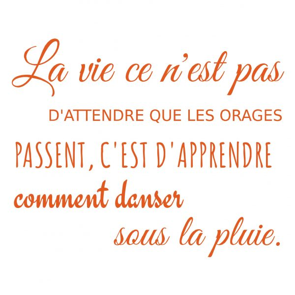 Decorative lettering wall sticker by CaptainText: la vie et les orages